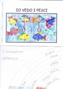 pesci e arcobaleno